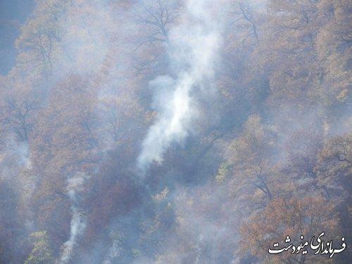 فرماندار مینودشت : آتش سوزی با تلاش مامورین و نیروهای مردمی خاموش شد