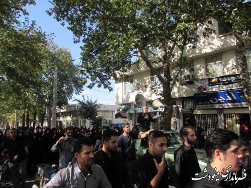 برگزاری راهپیمائی انزجار از اسرائیل در مینودشت