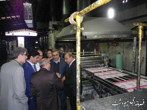 فرماندار مینودشت از کارخانه محصولات بسته بندی فجر بازدید کرد