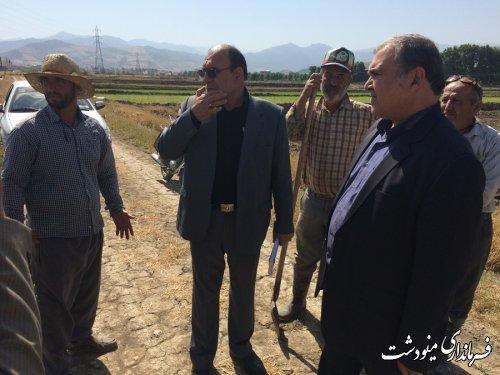 یکپارچه سازی اراضی کشاورزی تجربه ای موفق در کاهش آب مصرفی کشاورزان است