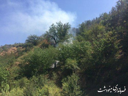 آتش سوزی در منطقه جنگلی حسینا از توابع بخش مرکزی مینودشت مهار شد