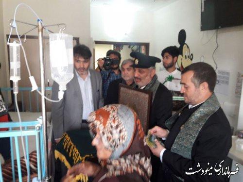 پرچم بارگاه ملکوتی امام رضا (ع) در بیمارستان مینودشت