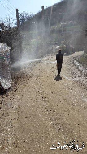 مرحله هفتم ضدعفونی و گندزدایی روستاهای بخش مرکزی مینودشت