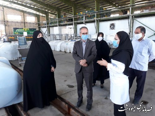 بازدید فرماندار از کارخانه زیتون آرشیا به مناسبت هفته تعاون