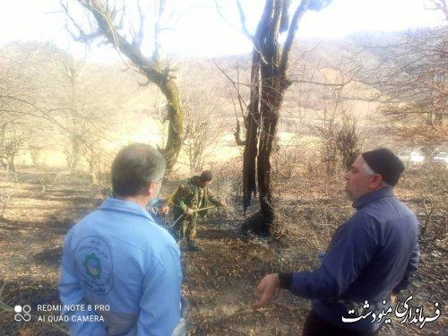 مهار آتش از جنگلهای شهرستان مینودشت