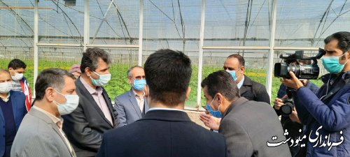 معاون وزیر تعاون: گلستان منطقه ای مملو از ظرفیت در تولید و فعالیت است