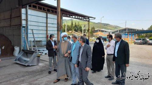 فرماندار مینودشت با حضور در یکی از واحد های تولیدی هفته کار و کارگر را تبریک گفت